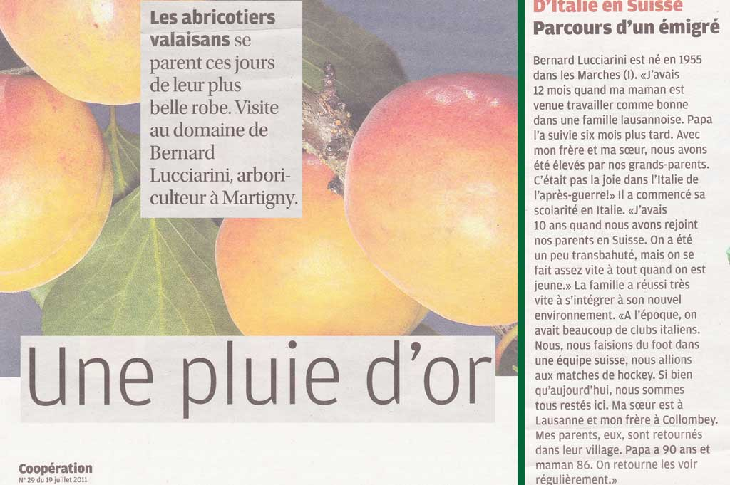 Anne-Marie Cuttat: Une pluie d'or sur le verger (A Golden Rain on the Orchard; extracts from Migros Magazine no. 29, 19 July 2011, p. 26-29) © Anne-Marie Cuttat, Charly Rappo/Migros Magazine