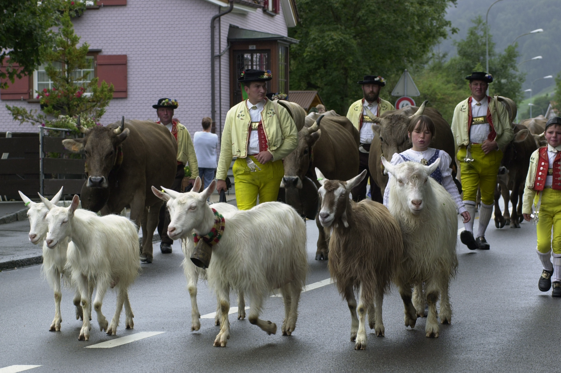 Descent, Urnäsch: Children and goats at the head of the procession © Hans Hürlemann, Urnäsch, 2001