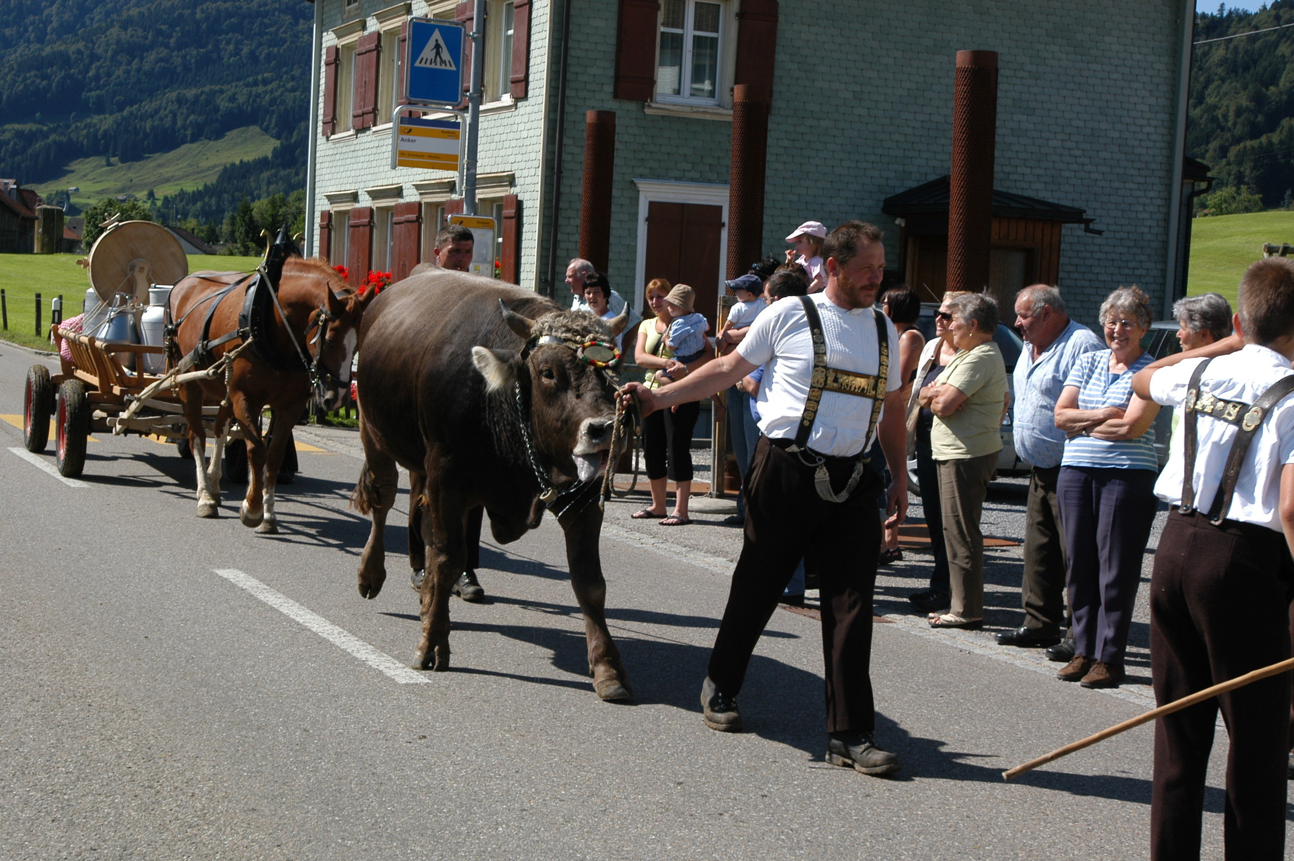 Descent, Urnäsch: A farmer leading a bull by its halter; behind him a cart full of tools for the daily work on the alpine pastures © Hans Hürlemann, Urnäsch, 2011